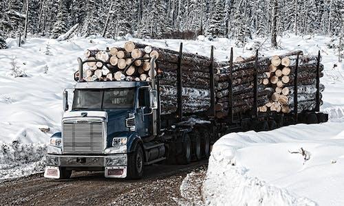 122sd-logging-2-trailer-500x300.jpg